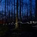 Night light painting