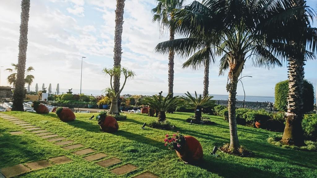 View From Our Veranda.  by carolmw