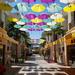 Under my umbrella - ella - ella