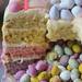 Rainbow Pinata Cake Interior