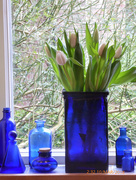 10th Mar 2018 - Blue glass with tulips