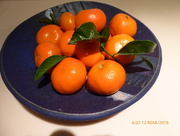 12th Mar 2018 - Clementines in blue bowl