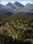 16th Mar 2018 - Flinders range