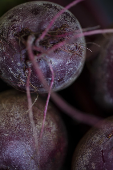 Purple - Beetroot by nicolecampbell