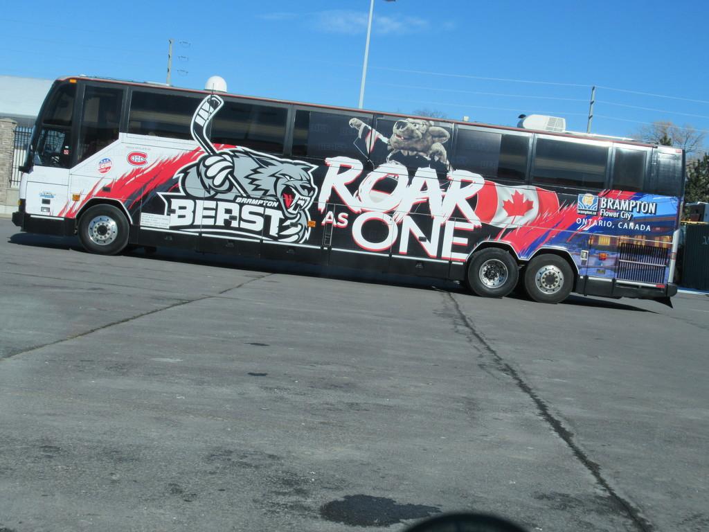 Roar Roar and Roar again by bruni