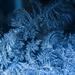 fractal frost by kali66