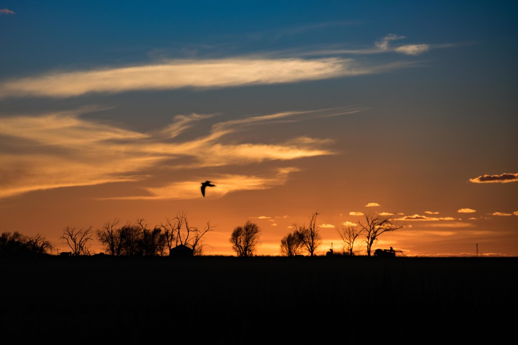 Sunset on the Prairie by ckwiseman