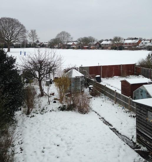 #39 winter again! by denidouble