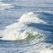 the roar of the ocean