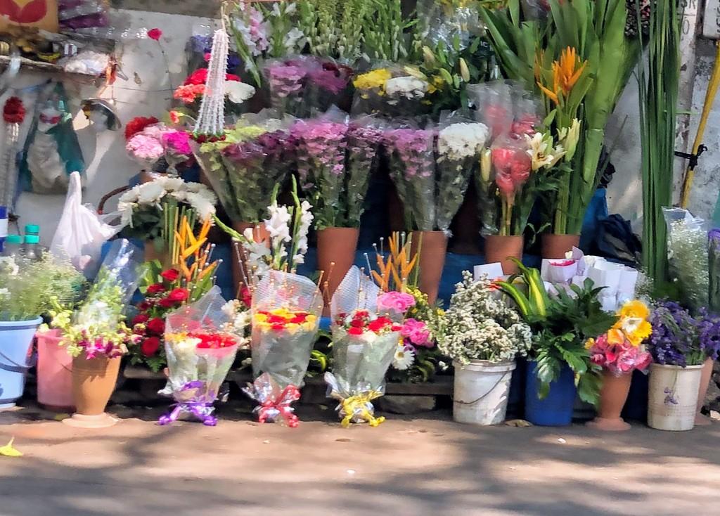 Roadside flower shop by veengupta