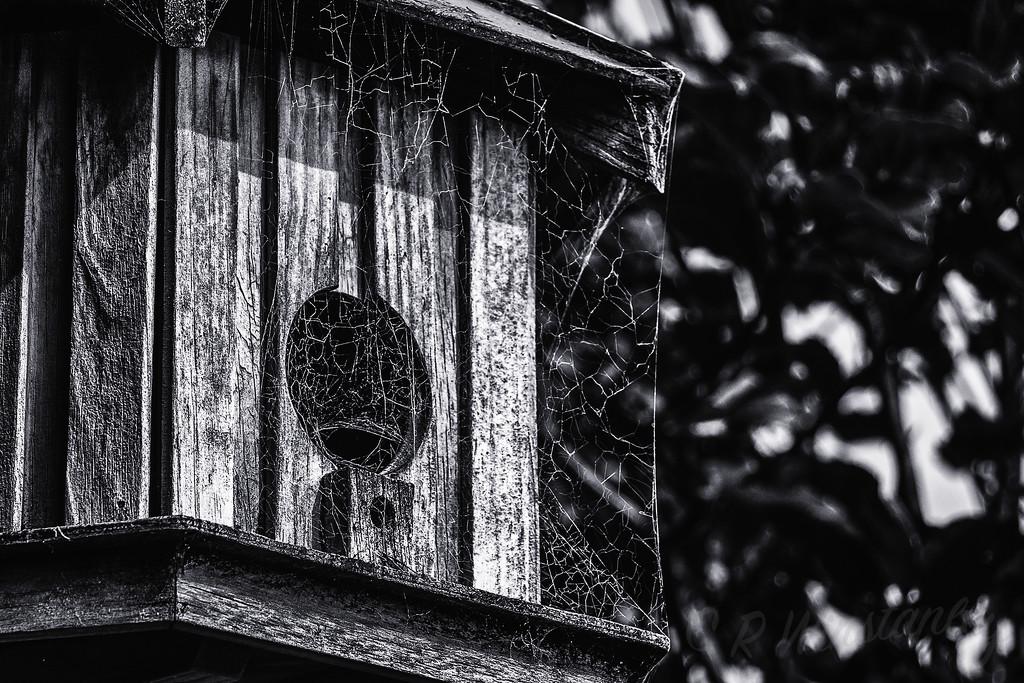 No one Home by kipper1951