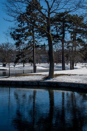 In the park by joansmor