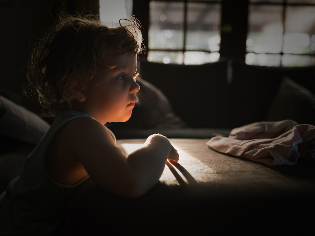 That morning light by jodies