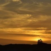 20th Mar 2018 - An Orange Sunset_DSC4183