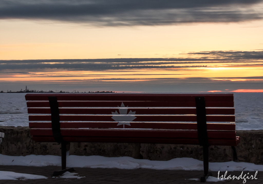 The Canadian Bench on the Beach by radiogirl