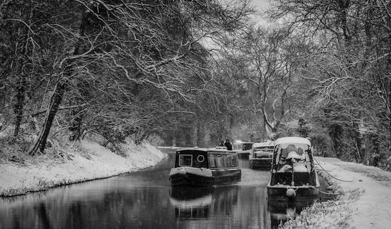 Winter wonderland by pasttheirprime