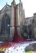 20th Mar 2018 - Weeping Windows at Hereford Cathedral