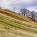 Welsh hillside in colour
