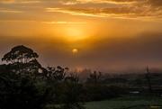 22nd Mar 2018 - Sunrise through the mist