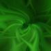 Twirled Green Aeonium