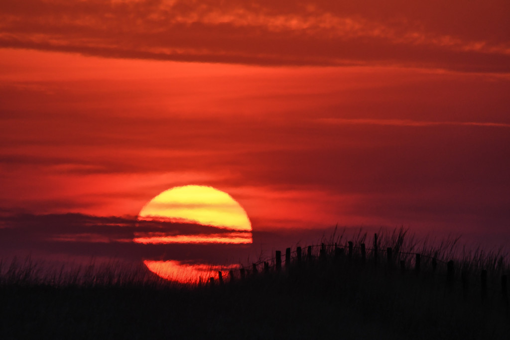 Fence and Sun Intersect by kareenking