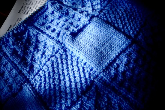 Day 23: Blue by carole_sandford
