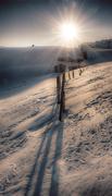 23rd Mar 2018 - winter morning