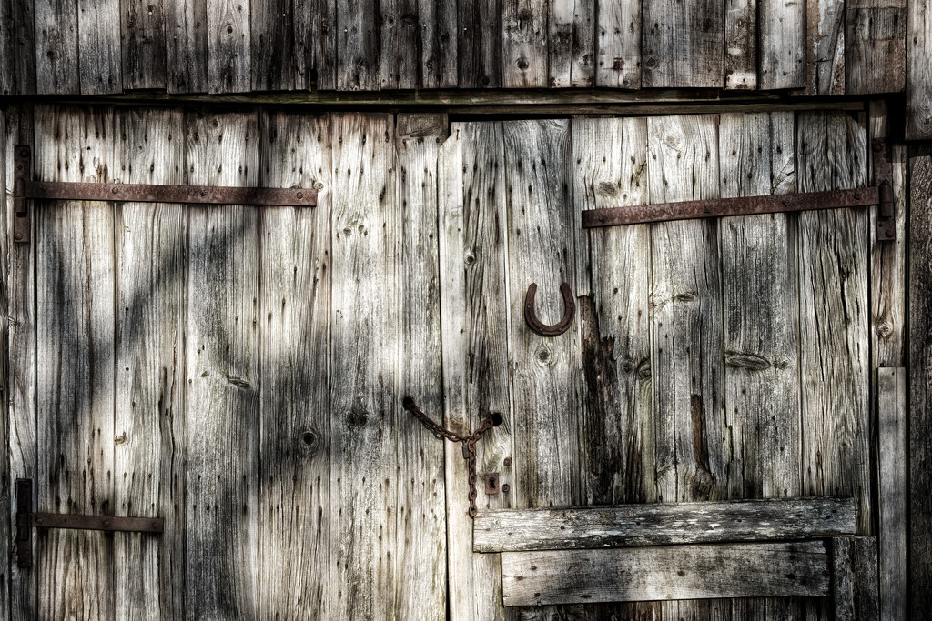 Paimpont 2018: Day 79 - Textures, Shadows & Rust by vignouse