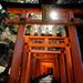 Inari temple, Kyoto by stefanotrezzi