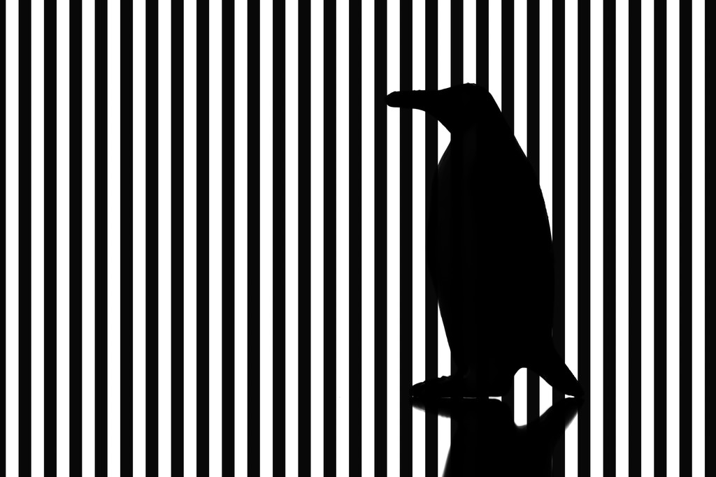 vertical stripes are so slimming! by northy