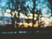 17th Mar 2018 - blue hour blur