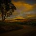 Around The Bend by purdey