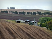 20th Mar 2018 - Tasmanian Rural Scene