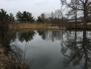28th Mar 2018 - Cloudy day at the Pond