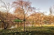 26th Mar 2018 - St James's Park lake