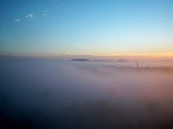 Fog  by bruni