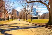 29th Mar 2018 - Boston Common