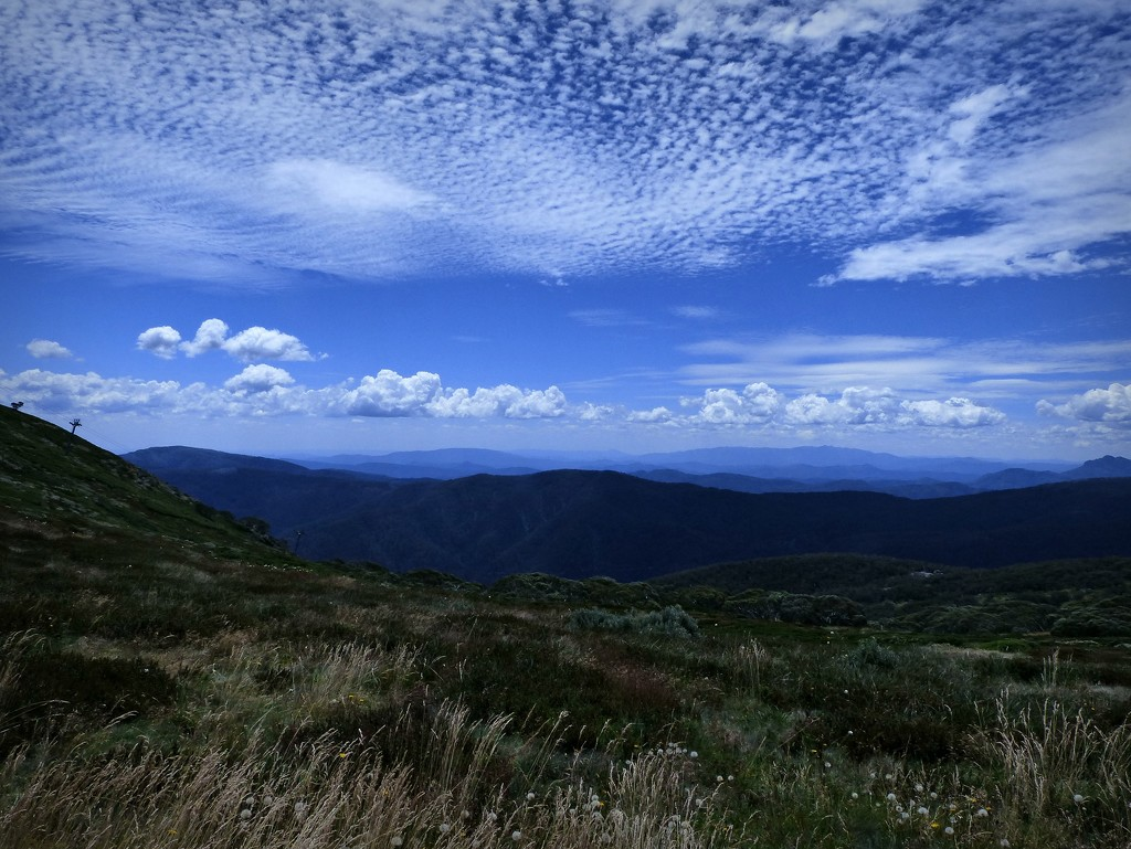 Victorian High Country by judithdeacon