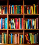 30th Mar 2018 - Pub bookshelves