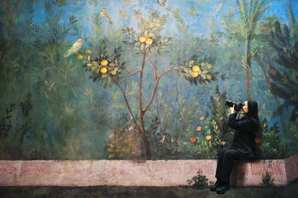 31 Roman art - Birdwatching at Villa Farnesina by domenicododaro