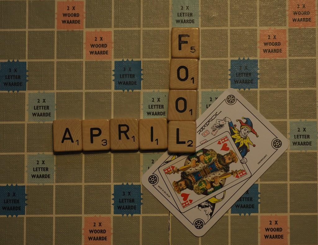 April Fool by jacqbb