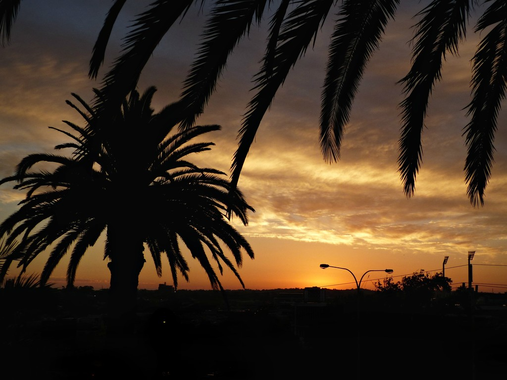 West Perth Sunset by judithdeacon