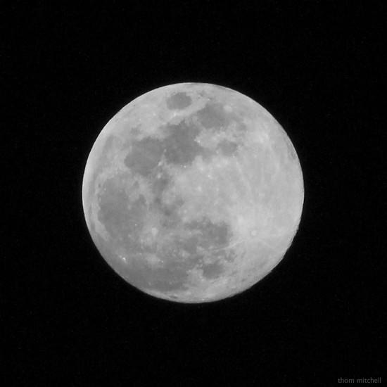 Last Blue Moon till 2020 by rhoing