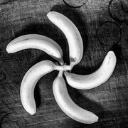 3rd Apr 2018 - Banana Spoke