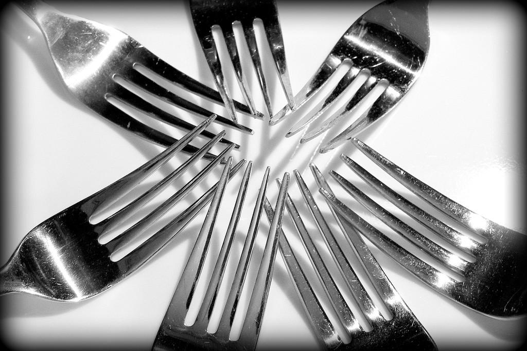Seven Forks by homeschoolmom
