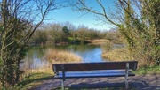3rd Apr 2018 - A stroll around the local nature reserve today!