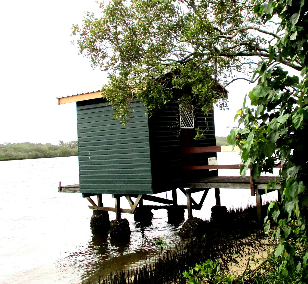 Another boatshed along the  Maroochy River by 777margo