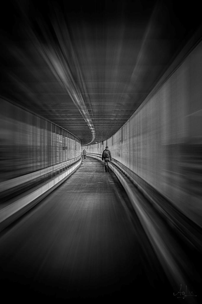 Speed by adi314