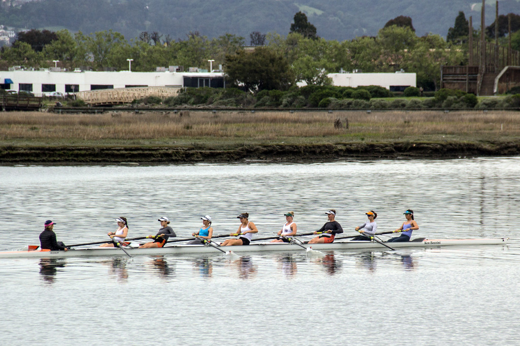 Rowers on the Estuary by jaybutterfield