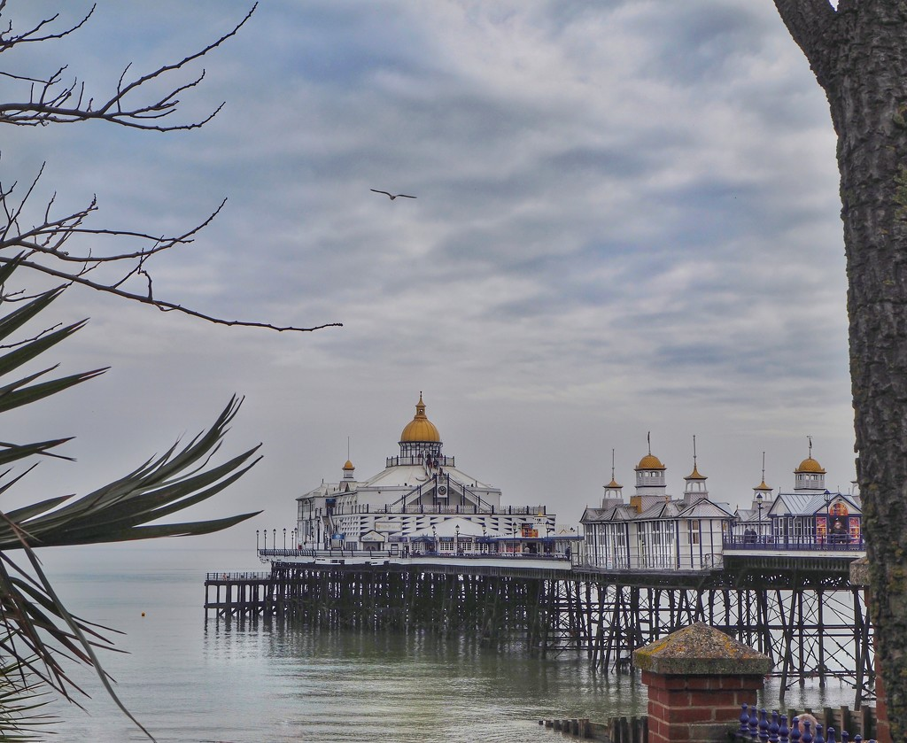 Eastbourne Pier  by suesmith